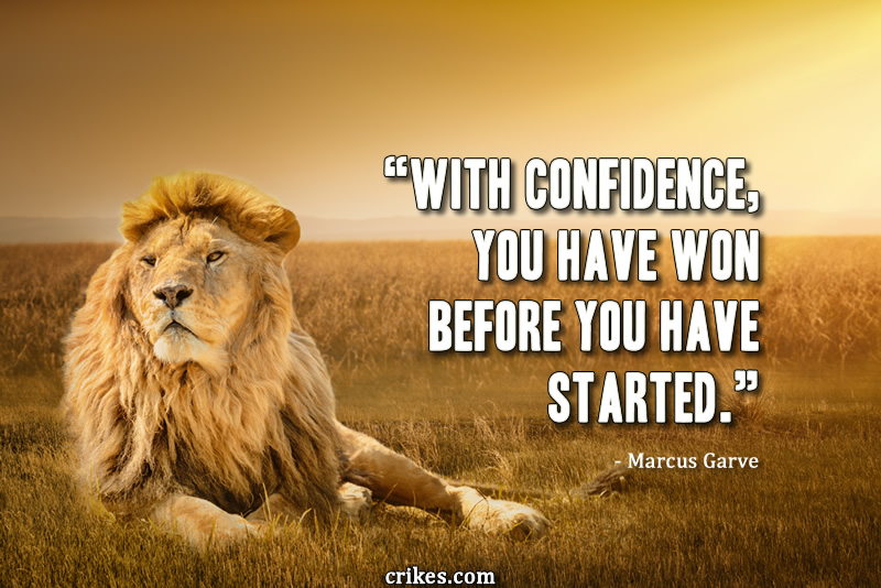 """With confidence, you have won before you have started."" - Marcus Garve"
